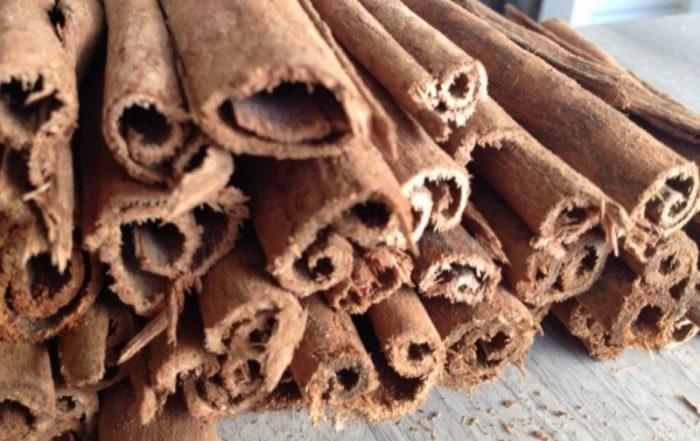 Le bois bandé est un puissant aphrodisiaque naturel